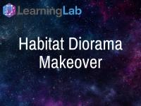 Habitat Diorama Makeover