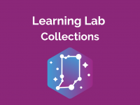 Learning Lab: Collections