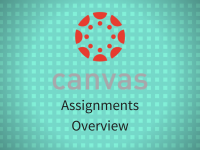 Canvas: Assignments Overview