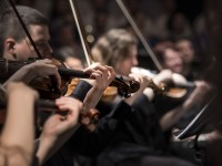 Dallas Symphony Orchestra: Elementary Music Lesson Ideas