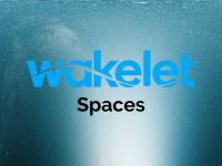 Wakelet Spaces