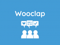 Wooclap: An Overview